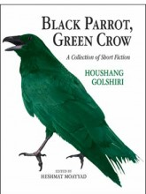 Black Parrot, Green Crow: A Collection of Short Fiction